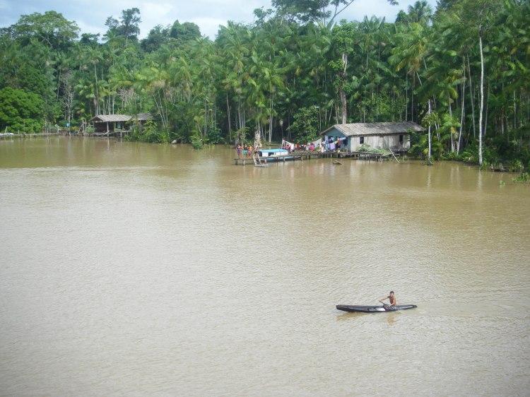 Amazonie wp-4