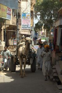 India 16 - Hendi Kaf