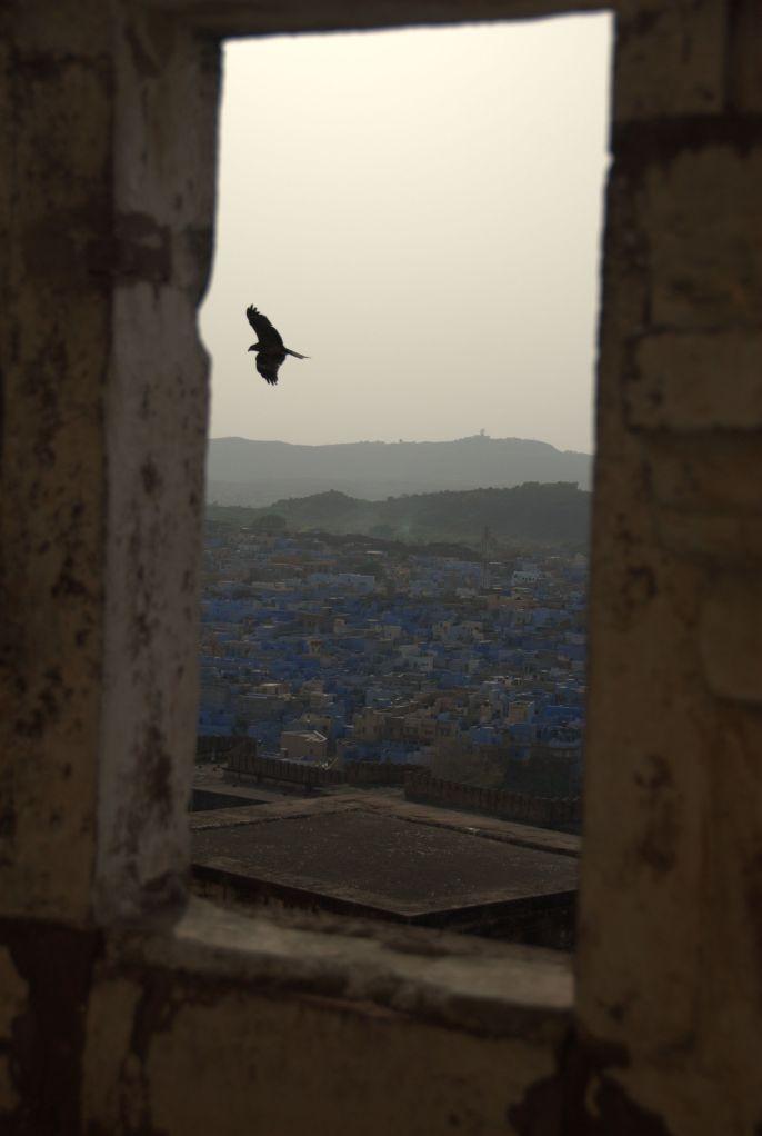 India 31 - Hendi Kaf